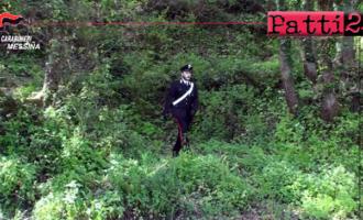 BARCELLONA P.G. – Nonno con due nipotine dispersi per ore nei boschi. Salvati dai carabinieri