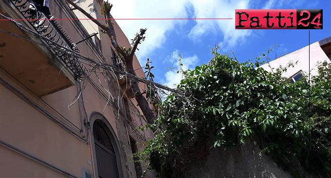 PATTI – Quartiere San Michele. Cavi elettrici dall'edera di un rudere con cui formano un vero groviglio fin sotto i balconi delle abitazioni.