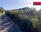 PATTI – Le contrade Carasi e San Paolo in totale stato di abbandono. Interrogazione consiliare