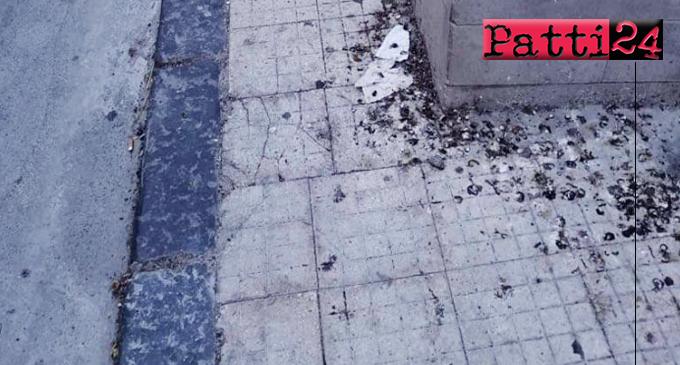 """PATTI – """"Tappeti"""" di escrementi di volatili sui marciapiedi. Nessuno provvede alla pulizia."""