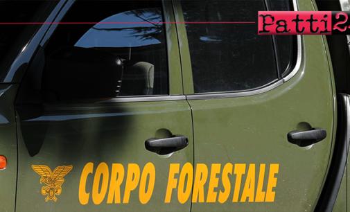 CARONIA – Ritrovato dai Forestali l'oculista messinese disperso da 5 giorni. Disidratato ma in buone condizioni di salute.