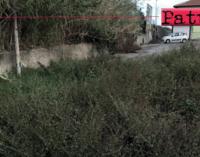 CAPO D'ORLANDO – Interrogazione consiliare su interventi di pulizia, decespugliamento e manutenzione, strada comunale.