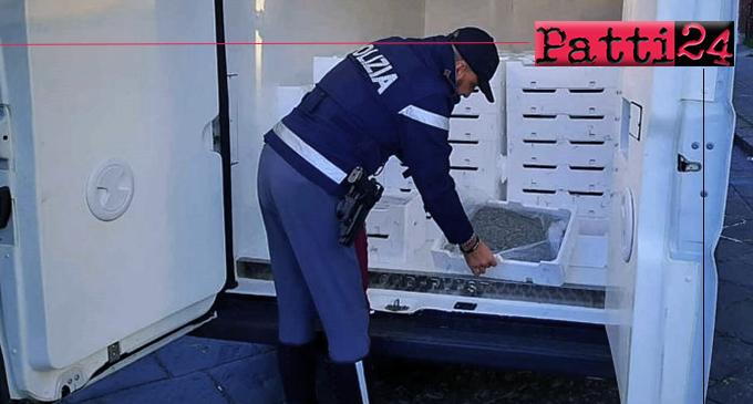MESSINA – Sequestrati oltre 1.100 Kg di novellame di sarda. Sanzioni per oltre 38.000 euro