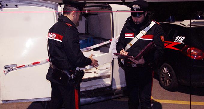 SANTO STEFANO DI CAMASTRA – 425 Kg di novellame sequestrato e sanzioni per 29.000 euro.