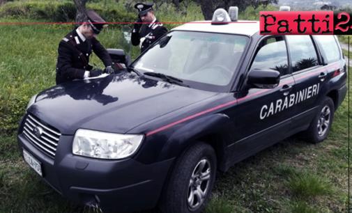 CARONIA – Allevatore 84enne denunciato per pascolo abusivo e sanzionato per  malgoverno di animali.