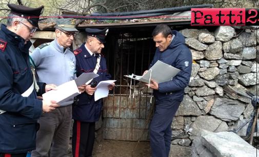 MANDANICI – Controlli aziende zootecniche. Sequestrati 65 capi di bestiame e sanzionata titolare azienda