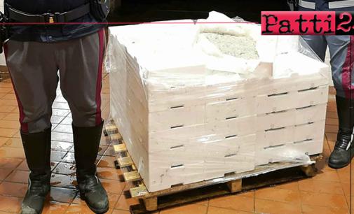FRANCAVILLA DI SICILIA – Sequestro di Novellame di Sarda e fermo di un mezzo adibito al trasporto di alimenti.