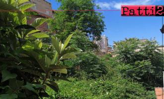 PATTI – Habitat naturale di insetti, randagi e ratti.  Precaria situazione igienico-sanitaria fra via Ceraolo e via Garibaldi.