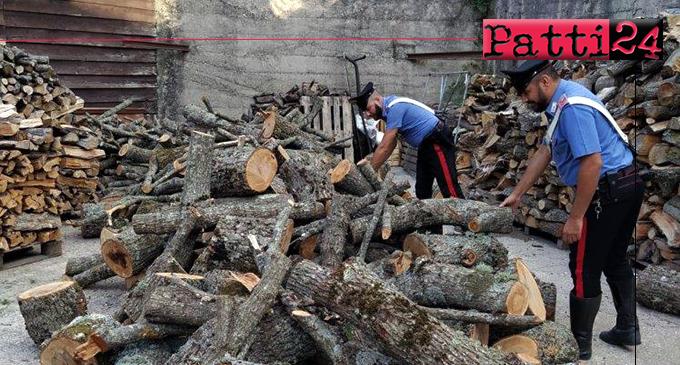 MISTRETTA – Tentano di rubare legna in area boschiva demaniale per rivenderla. 2 arresti