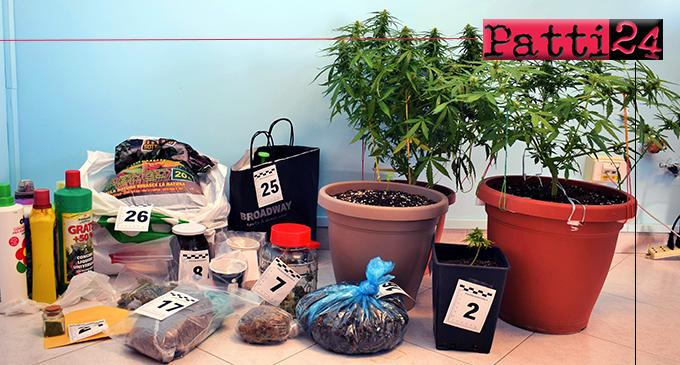 CAPO D'ORLANDO – Aveva disposto piante di cannabis in balcone. Arrestato 52enne