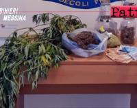 TERME VIGLIATORE -Coltivava marijuana in casa. Arrestato 32enne