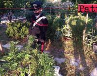 TAORMINA – 3 arresti per traffico droga, rapina ed estorsione. Colpita rete di distribuzione droga a Taormina e Giardini Naxos